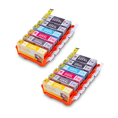 Compatible Ink Cartridge 12 Packs Replacement for Canon PGI-225 CLI-226 XL,Bigger Ink for Canon PIXMA IP4920 MG8120 MG5120 MG6120 (2 Large Black, 2 Small Black, 2 Cyan, 2 Magenta,2 Yellow, 2 Gray) ()