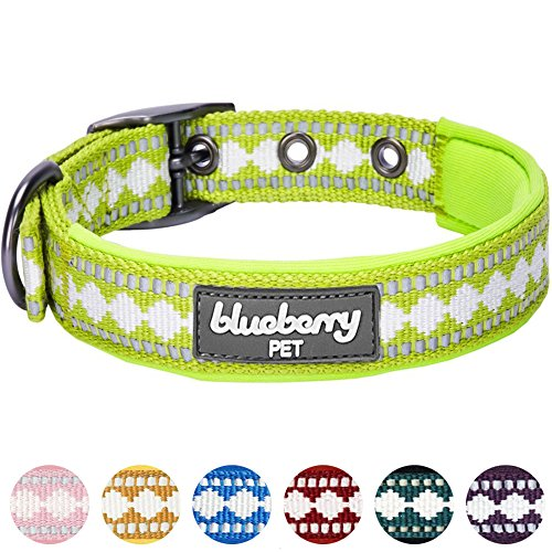rs Soft & Comfy 3M Reflective Jacquard Padded Dog Collar with Metal Buckle in Macaw Green, Neck 9-12.5