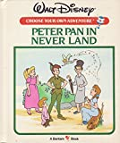 Peter Pan in Neverland (Disney Choose Your Own Adventure)