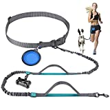Newstarxy Hands Free Dog Running Leash with Dual Bungees, Free Control for Up to 150 lbs Large Dogs, Dual-Handles Dog Walking Leash with Adjustable Waist Belt for Running Jogging Walking and Hiking