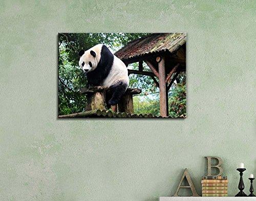 Cute Animal Giant Panda Wall Decor