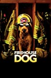 DVD : Firehouse Dog