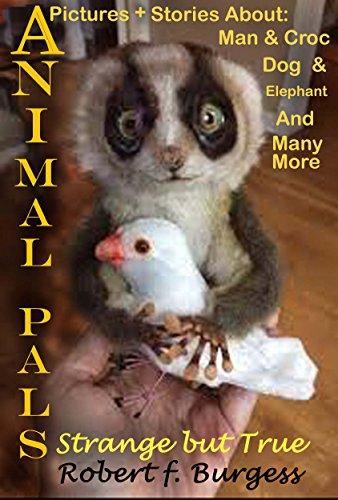 ANIMAL PALS: Strange But True