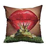 Best DS Cooling Pillows - fengruihome Decorative Couch Pillow Cases ds Her Frog Review