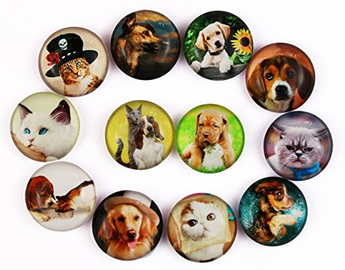 Pack-12 Cat Dog Refrigerator Magnets, Crystal Glass Fridge Magnets for Holiday Gift, Cosylove Magnets for Home Decorations Gift, Photos, Cabinets, Whiteboards
