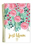 bloom daily planners 2018 Calendar Year Daily Planner – Passion/Goal Organizer – Monthly and Weekly Datebook Agenda Diary – January 2018 – December 2018 – 6″ x 8.25″ – Just Bloom Reviews