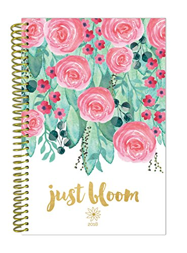 bloom daily planners 2018 Calendar Year Daily Planner - Passion/Goal Organizer - Monthly and Weekly Datebook Agenda Diary - January 2018 - December 2018 - 6