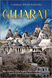 Gujarat: The History of the Indian State from the Ancient Indus Valley Civilization to Today