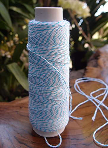 Dexon Power Bakers Twine Turquoise & White 100 yds