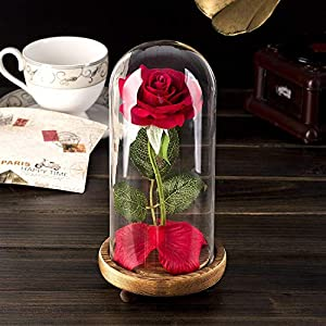 Beauty and The Beast Rose, Enchanted Red Silk Rose Lamp That Lasts Forever with LED, Fallen Petal in Glass Dome on Wooden Base, Best Gift for Holiday Birthday Party Wedding Anniversary Valentine's Day 2