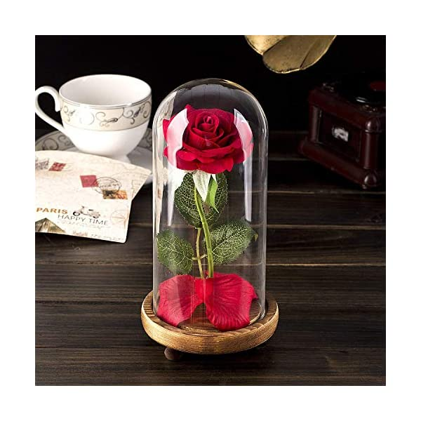 Beauty-and-The-Beast-Rose-Enchanted-Red-Silk-Rose-Lamp-That-Lasts-Forever-with-LED-Fallen-Petal-in-Glass-Dome-on-Wooden-Base-Best-Gift-for-Holiday-Birthday-Party-Wedding-Anniversary-Valentines-Day
