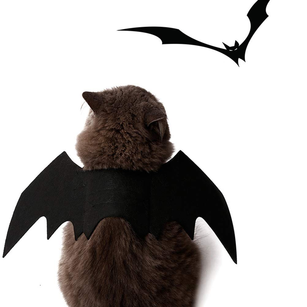 Amazon.com: POPETPOP Fashion Pet Cat Bat Wings, Halloween Cat Bat Costume, Bat Wings Pet Felt Costume for Puppy Kitty Festival Party Cosplay, ...