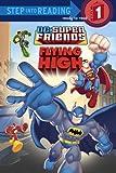 Super Friends: Flying High (DC Super Friends)