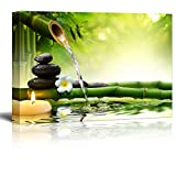 wall26 Rocks and Flowers Over Bamboo Branches on a Lake with a Waterfall - Canvas Art Home Decor - 24x36 inches