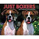 Just Boxers 2015 Daily Boxed Calendar