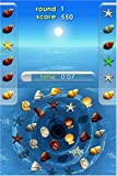Zenses: Ocean Edition - Nintendo DS