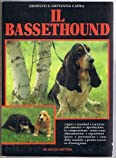 Il bassethound