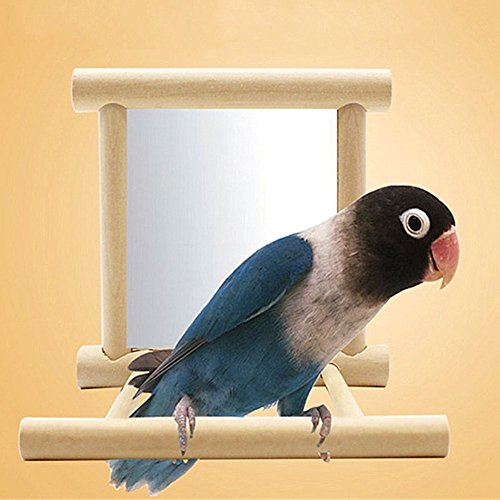 Bird Parrot Mirror Toy with Perch for Parrot Parakeet Budgies Cockatiel Conure Finch Lovebird African Grey Macaw Amazon Cockatoo Birdcage Wood Stand Perch(Color Random)) (3.943.943.94inch) Birdcage Mirror