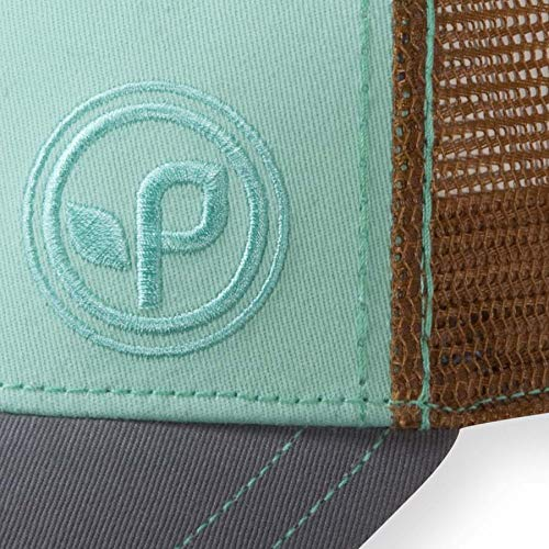 55032dd1cb8 Pistil Buttercup Trucker Hat, Green Mint