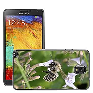 Etui Housse Coque de Protection Cover Rigide pour // M00114984 Abeja Insecto Flor Cerrar Honey Bee // Samsung Galaxy Note 3 III N9000 N9002 N9005