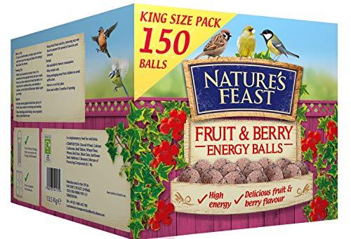 Natures Feast Fruit & Berry Energy Balls 150 Box