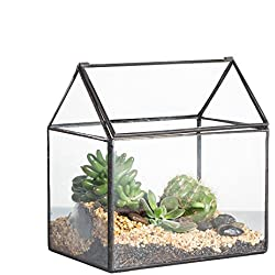 NCYP Geometric Glass Terrariumn Box Handmade House Shape Close Glass Tabletop DIY Display Planter Windowsill Flowerpot with Swing for Succulent Air Plants Moss Fern Lid Reptile 6.2X 5.9X 4.3inches