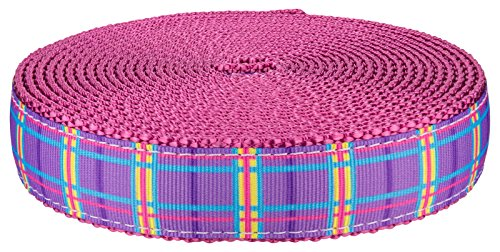 (Country Brook Design - 1 Inch Spring Purple Plaid on Rose Nylon Webbing, 20 Yds)