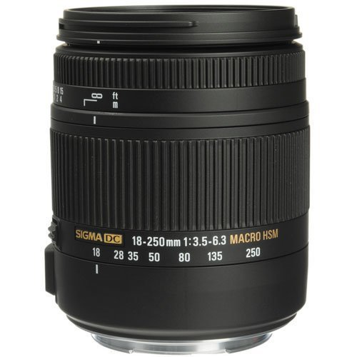 Sigma 18-250mm f3.5-6.3 DC Macro OS HSM for Canon (883101) (Renewed)