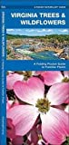 Virginia Trees & Wildflowers: A Folding Pocket Guide to Familiar Plants (A Pocket Naturalist Guide)