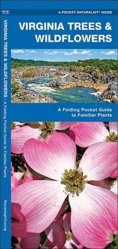 Download Virginia Trees & Wildflowers: A Folding Pocket Guide to Familiar Plants (A Pocket Naturalist Guide) ebook