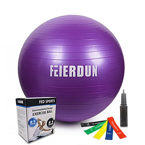Exercise Ball - Anti Burst Tested yoga ball Supports 2200lbs,Includes Exercise Resistance Loop Bands & Hand Pump for Home, Balance, Gym, Core Strength, Yoga, Fitness, Pilates(Purple 65cm)