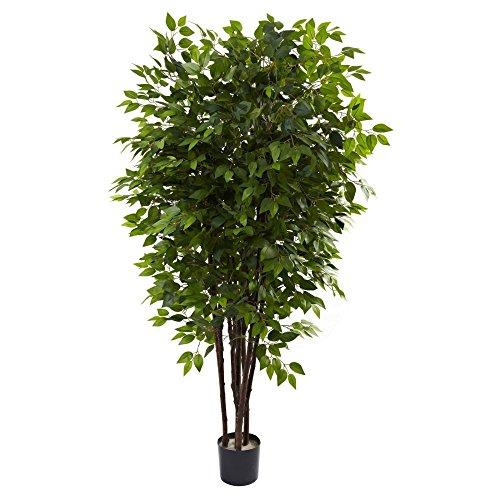Deluxe Ficus Tree - 3