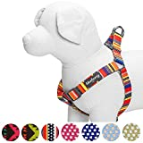 Blueberry Pet Step-in Nautical Flags Inspired Designer Dog Harness, Chest Girth 16.5'' - 21.5'', Small, Adjustable Harnesses for Dogs