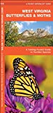 West Virginia Butterflies and Moths, James Kavanagh, 1583554858