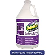 Best OdoBan 911162G4 Professional Deodorizer Disinfectant
