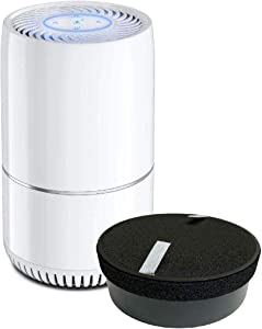 Nispira True HEPA H13 Air Filter Replacement Compatible with hOmeLabs Compact Air Purifier HME020248N 3 Stage Filtration with Night Light Office Bedroom, 1 Unit