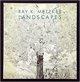 Book Ray K. Metzker: Landscapes