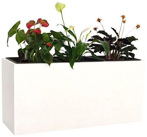 Pflanztrog Blumentrog Raumteiler Fiberglas rechteckig LxBxH 108x38x50cm perlmutt weiß