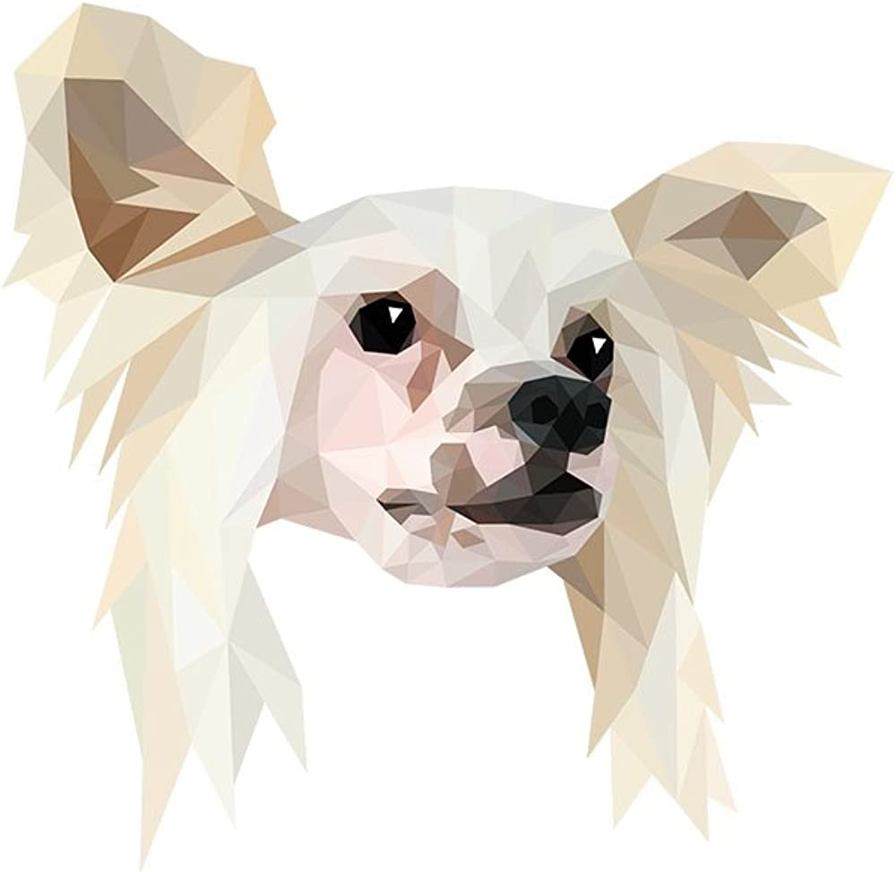 Chinese Crested Dog geometric collection of earrings with purebred dog