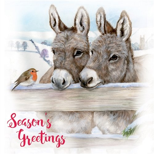 Charity Christmas Cards (OH2271) - Donkeys and Robin - Pack of 10 Cards - Sold in Aid of Marie Curie Cancer Care and Save The Children Otter House