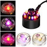 Uranny 12 LED Mist Maker Fogger Water Fountain Pond Fog Atomizer Air Humidifier (12 Led)