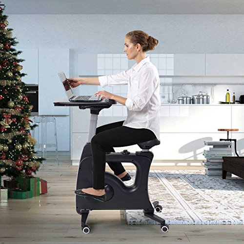 Flexispot Standing Desk Exercise Bike Home Office Furniture Desk