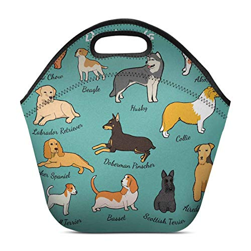 InterestPrint Insulated Neoprene Lunch Bag Set of Dog Breeds Reusable Tote Lunchbox