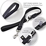 PERSUPER Pet Dog Cat Seat Belt and leash 2 in 1 Mutifunction Adjustable Car Safety Leads Vehicle Seat belt, Safety Nylon Dog Leash with Reflective Fabric(Black)