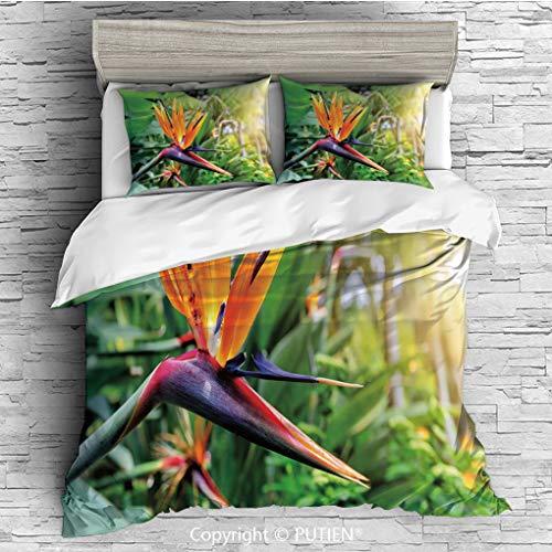 FULL Size Cute 3 Piece Duvet Cover Sets Bedding Set Collection [ Plant,Close up Image of Strelitzia Reginae Bird of Paradise Flower Madeira Island Portugal Decorative,Multicolor ] Comforter Cover Set