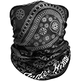 Paisley Outdoor Face Mask Buff By IndieRidge - 100% Microfiber Multifunctional Seamless Headwear 11+ Ways to Wear for Motorcycle Hiking Cycling Ski Snowboard Lifetime Warranty, Great For Burning Man