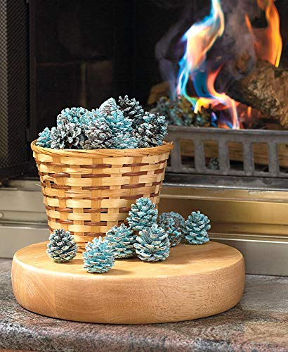 Fireplace Rainbow Flame-Coloring Flame Changing Pine Cones 1 Pound Bag ()