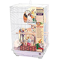 Penn Plax Cockatiel Bird Cage Starter Kit, 27 Inch Cage with Kabob Toy, Cuttlebone, Treat, and Wood Perch