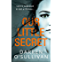 Our Little Secret: a gripping thriller for 2017