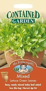 Mr Fothergill?s Seeds Ltd 13090 - Semillas
